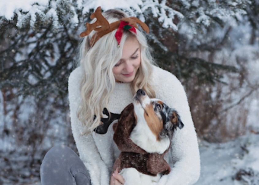 holiday hazard for pets